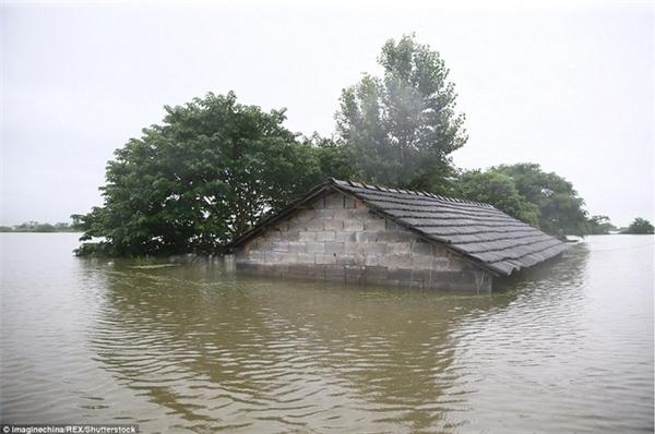Tình trạng mưa lớn kéo dài gây ngập lụt nghiêm trọng, thiệt hại lớn về người và của.