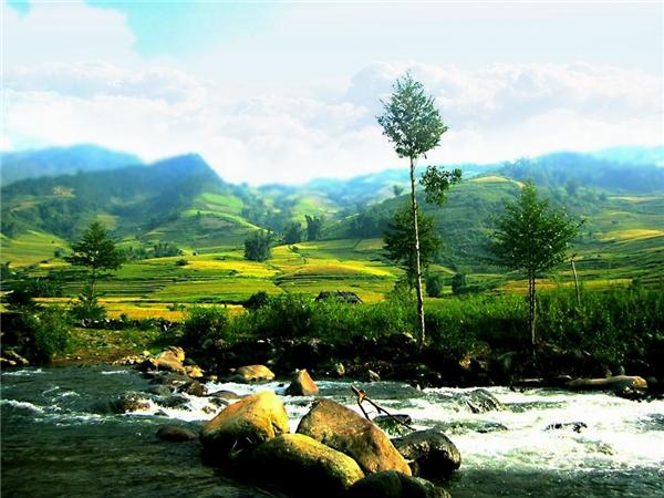 """Du lịch Việt Nam - """"Ngây ngất"""" trước cảnh đồng quê đẹp như tranh ở Việt Nam"""
