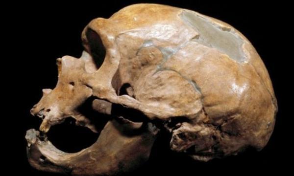 Phát hiện dấu vết cổ đại của một tộc người ăn thịt đồng loại
