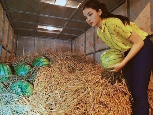 """Người đẹp Nam Định từng bị tố """"làm màu"""" khi tham gia một hoạt động từ thiện giúp đỡ những người nông dân trồng dưa. - Tin sao Viet - Tin tuc sao Viet - Scandal sao Viet - Tin tuc cua Sao - Tin cua Sao"""