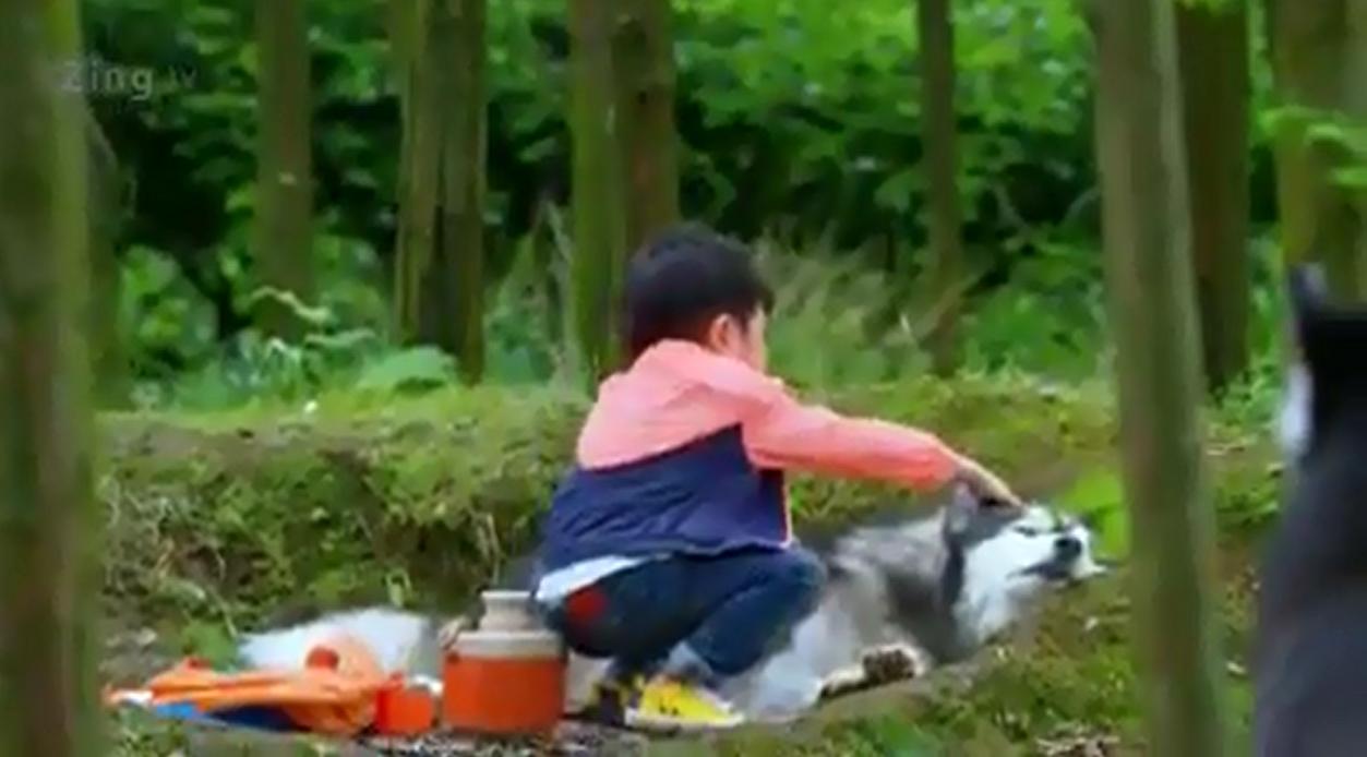 """Bài học ý nghĩa về tình thương từ clip ngắn """"Cậu bé và bầy sói"""""""