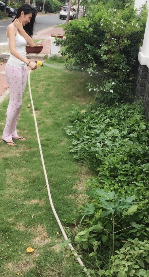 Thủy Tiên còn tận dụng thêm phần đất trống phía trước nhà để trồng rau mồng tơi. Cô thổ lộ rằng vì ông xãthích ăn canh mồng tơi nên cô trồng nhiều loại cây này. - Tin sao Viet - Tin tuc sao Viet - Scandal sao Viet - Tin tuc cua Sao - Tin cua Sao