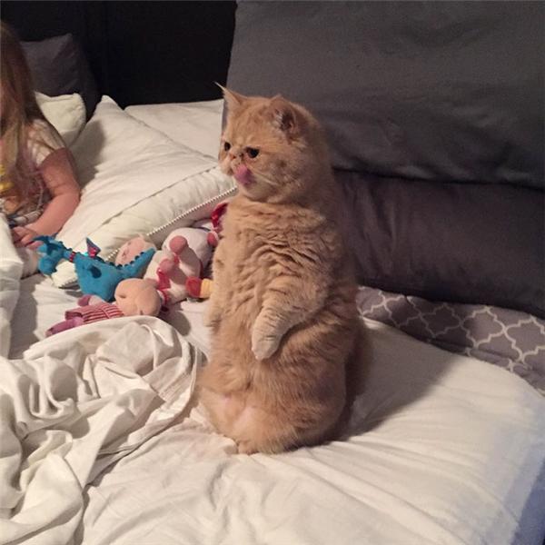 """""""Né ra, đây là chỗ của riêng ông ngồi."""""""