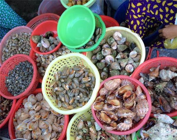 Du lịch Nha Trang - Ốc cực rẻ ở Nha Trang ăn hoài mà chưa thấy cạn túi