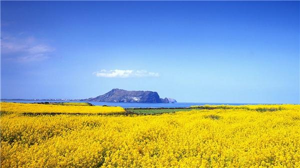 Đảo Jeju là nơi duy nhất tại Hàn Quốc không yêu cầu visa.