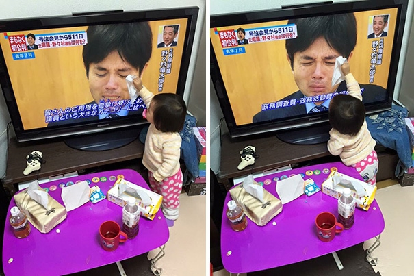 Hành động lau nước mắt cho 1 chính trị gia đang khóc trên truyền hình của cô bé người Nhật Bản thực sự khiến nhiều người xúc động.
