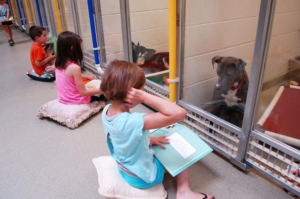 Những cô bé, cậu bé đang đọc sách để tạo sự liên kết đồng thời giúp đỡ những chú chó chó nhút nhát, tự cô lập và sợ hãi con người.