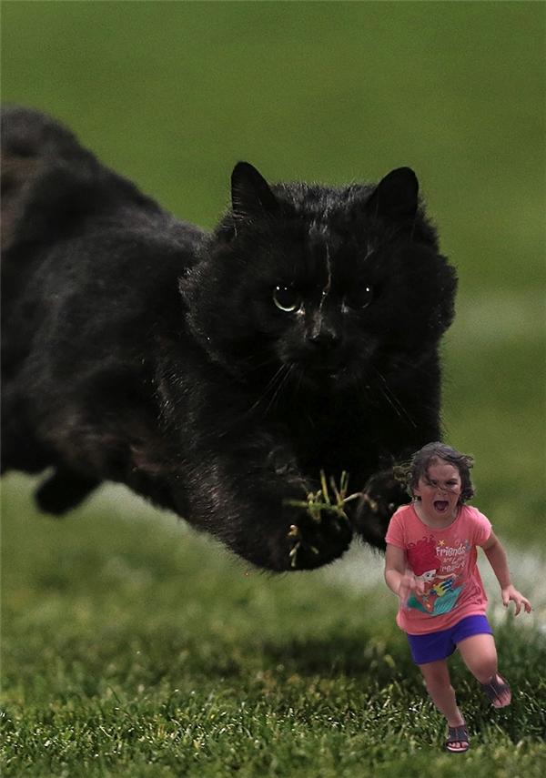 Mẹ ơi cứu con, con mèo nó ăn thịt con!