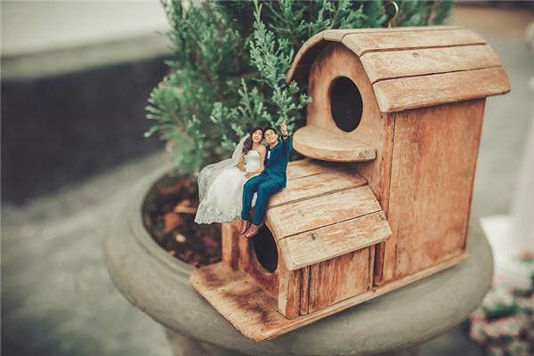 Ấn tượng bộ ảnh cưới cô dâu chú rể biến thành người tí hon