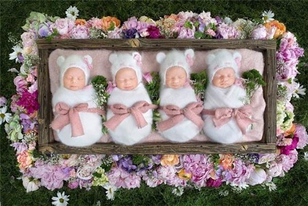 Tên của các bé lần lượt làAbigail, Mckayla, Grace và Emily Webb.