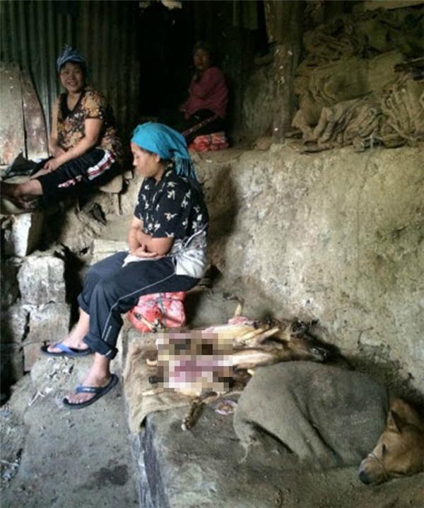 Chó đã bị giết thịt được đặt ngay cạnh một chú chó còn sống và đang bị rọ mõm. (Ảnh: HSI)