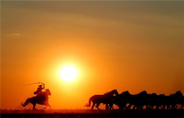Kỵbinh truyền thốngHungary chăn một đàn ngựa khi mặt trời lặn ởcánh đồng rộng lớnHungary tạiHortobagy, Hungary.(Ảnh: Laszlo Balogh)