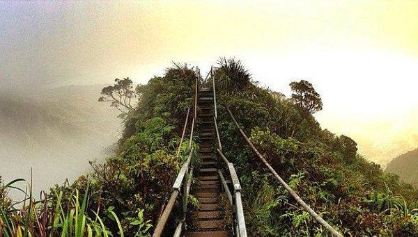 Haiku Stairs được xây dựng vào đầu những năm 1940 làm trạm thu phát thông tin liên lạc của Mỹ trong Thế chiến 2. Những bậc thang bám theo triền dốc thung lũng Haiku đến đỉnh Koolaus phủ đầy mây trắng. Khi lên đến đỉnh, du khách có cơ hội ngắm toàn cảnh đảo Oahu nằm bên dưới. Một cơn bão gần đây khiến cầu thang bị phá hủy đáng kể.