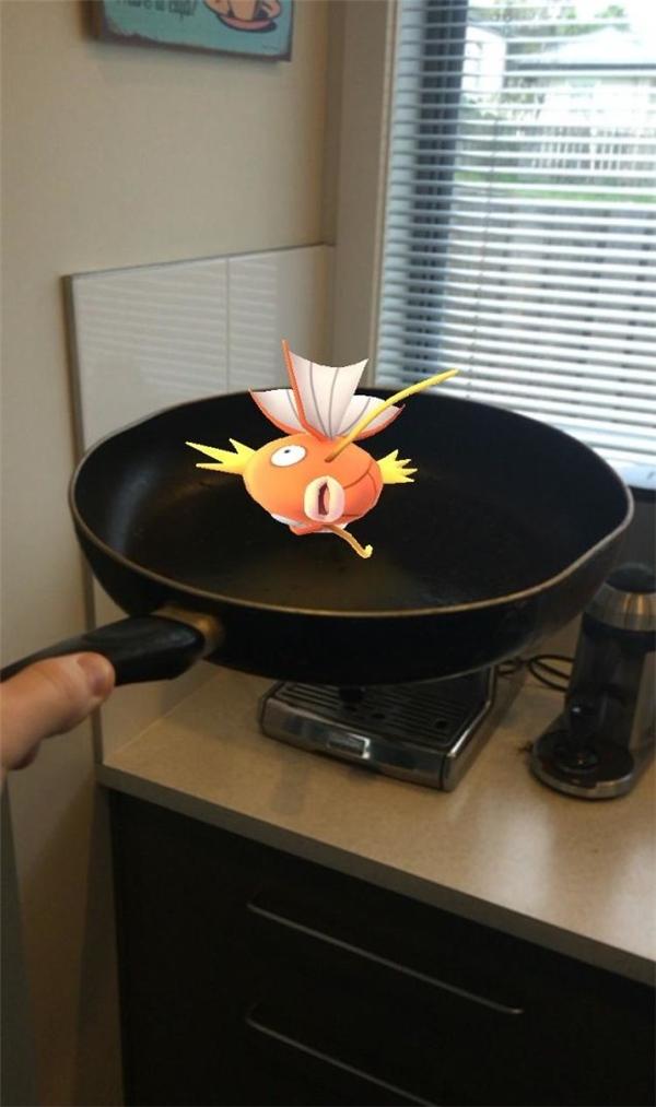 Phát hoảng với những địa điểm bắt Pokemon không tưởng và khó đỡ