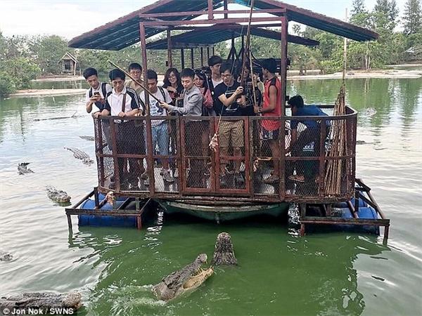 Thót tim chứng kiến du khách đứng trên bè tự chế cho cả bầy cá sấu ăn