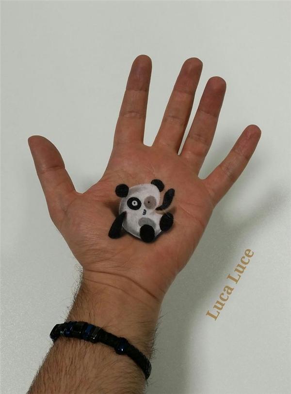Gấu trúc xin chào!(Ảnh: Luca Luce)
