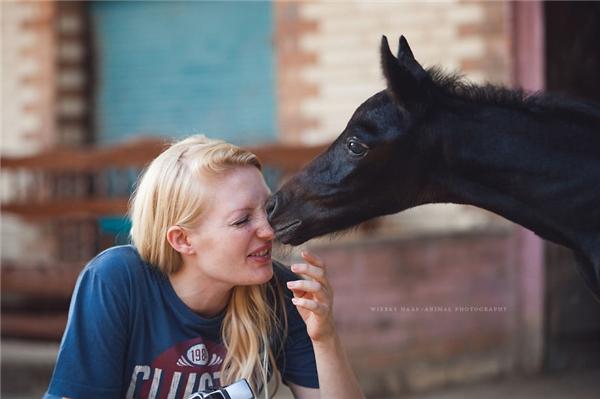 Tuy nhiên,Wiebke Haaslại muốn cả thế giới thấy được phần còn lại của cuộc sốngkhắc nghiệt như thế nào, đặc biệt là số phận những chú ngựa và lạc đà ở khu vực kim tự tháp Giza.