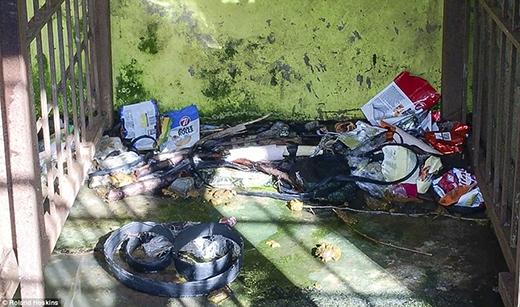 Chuồng của Tomi thì đầy những rác và cực kỳ bẩn thỉu.