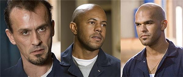 T-Bag, C-Note và Fernando cũng sẽ trở lại với loạt phim ăn khách này.