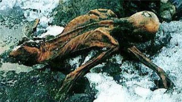 Xácướp Otziđược phát hiện vào năm 1991, bởi 2 nhà leo núi ngườiĐức tại dãy núi Otztal Alps.