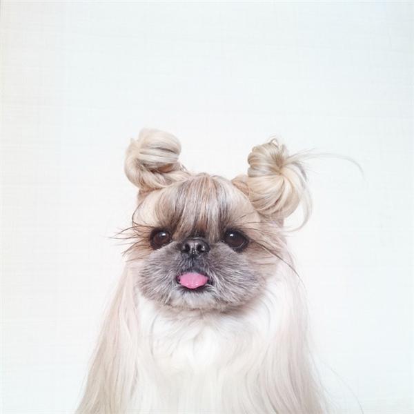 Có ai búi tóc đẹp giống em không nè.