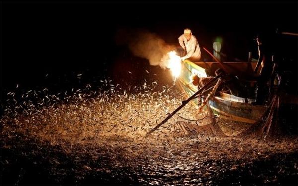 Đánh bắt cá bằng đèn đuốclà một nét văn hóa rất đặc trưng. Tuy nhiên, do công nghệ đánh bắt ngày càng hiện đại nên phương pháp này đã không được coi trọng như trước.