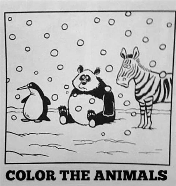 Khi cô giáo bảo tô màu lên những con vật này.
