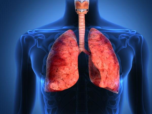 Căn bệnh này có thể tiêu diệt các tế bào máu và mô nội tạngcủa người bệnh với một tốc độ nhanh chóng.