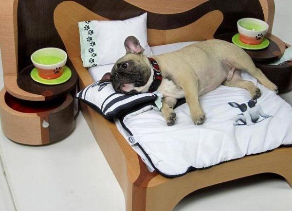 """""""Thật ra ai thích thì thích, chứ anhkhông có ưa cái giường này, được có cái tốn tiền gỗ tốt thôi chứnhìn chán muốn chết"""".(Ảnh Internet)"""