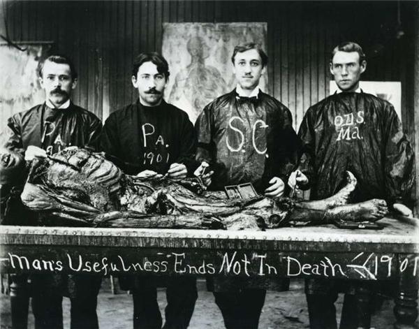 Các thực tập sinh đang tiến hành nghiên cứu một xác chết.