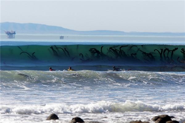 Những cơn sóng đã làm cuộn lên cả một thủy cung sinh động.