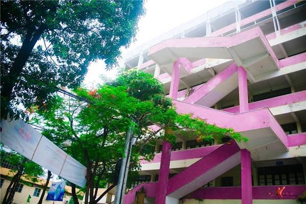 Từng ngõ ngách của trường đều được sơn màu hồng nữ tính.