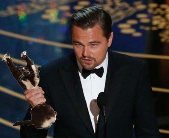 Trở thành chiếc cúp danh giá nhất Hollywood.