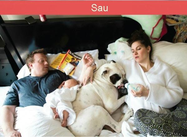 Thói quen ngủ, nghỉ cũng thay đổi rõ rệt với sự góp mặt của các thành viên mới.