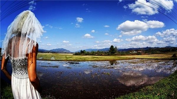 Cánh đồng ở miền quê của Lào sau vụ gặt.