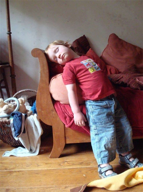 Nằm nệm quen rồi, lâu lâu con thử cảm giác ngủ đứng xem thế nào.