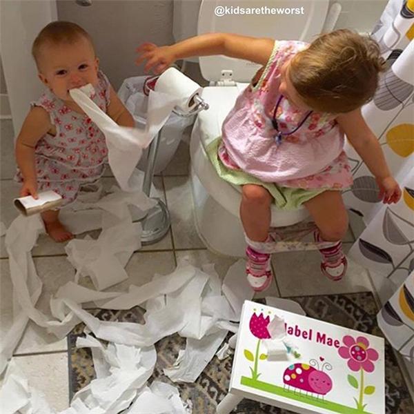 """Xé hết cả một cuộn giấy rồi, giờ đang """"xử lý"""" tiếp cuộn giấy thứ hai."""