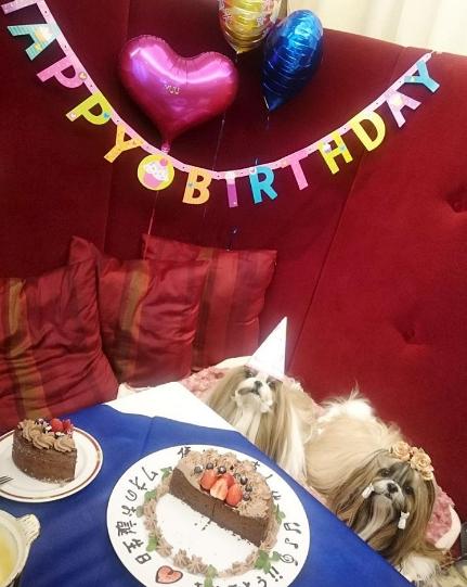 Hai cu cậu vừa tổ chức một sinh nhật cực kì lung linh và hoành tráng.