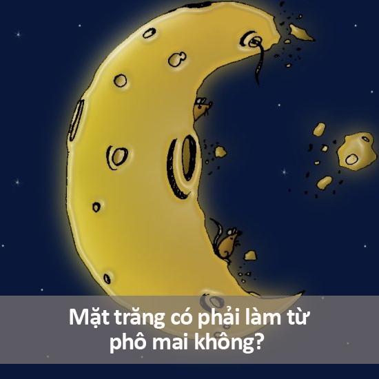 Tất nhiên là phải rồi, bạn không thấy nó có màu vàng sao? Người ta phải mang cả phi thuyền đến đó để xúc phô mai về cơ mà. Bạn nghĩ phô mai từ đâu mà có nếu không phải từ mặt trăng?