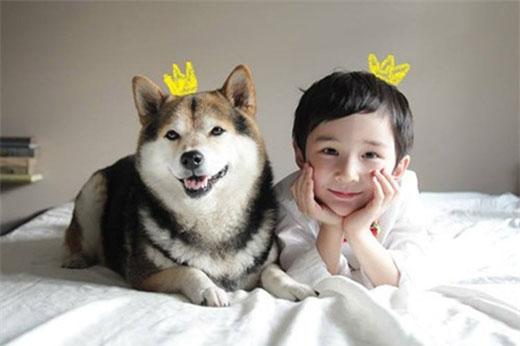 Sau 5 năm lớn lên bên nhau, tình bạn của cậu bé Issac và chú chó Maru vẫn rất thân thiết.
