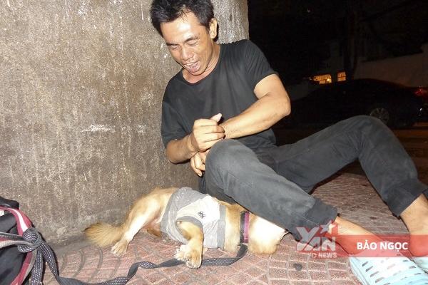 anh đánh giày và chú chó mù