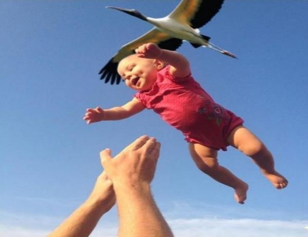 16. Chào bố, con vừa được đi du lịch bằng máy bay chim về.
