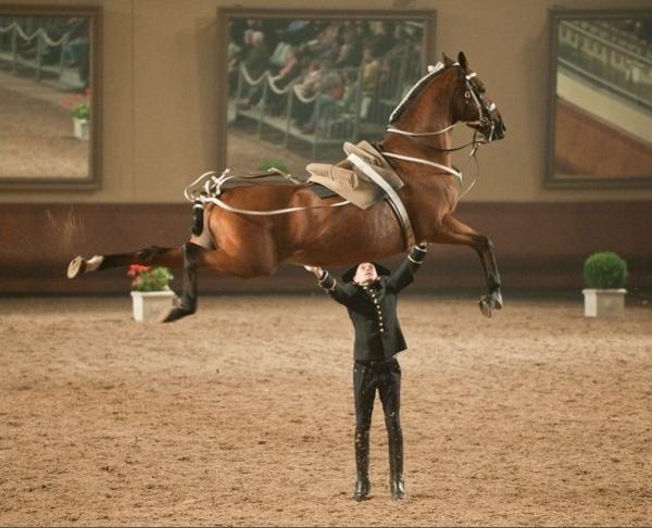 21. Hãy cho anh sức mạnh, anh sẽ nâng bổng cả thế giới chứ nói gì một con ngựa.