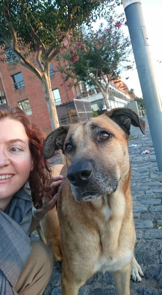 Ở thành phố xa lạ, Olivia kết bạn với một chú chó hoang thân thiện.(Ảnh: FBNV)