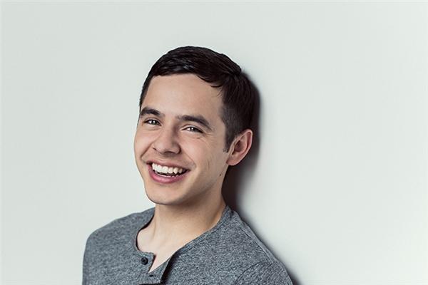 David Archuleta chính thức theo đuổi nghiệp hát vào năm 12 tuổivà có bước ngoặt quan trọng kể từ khi tham dựAmerican Idol 2008.