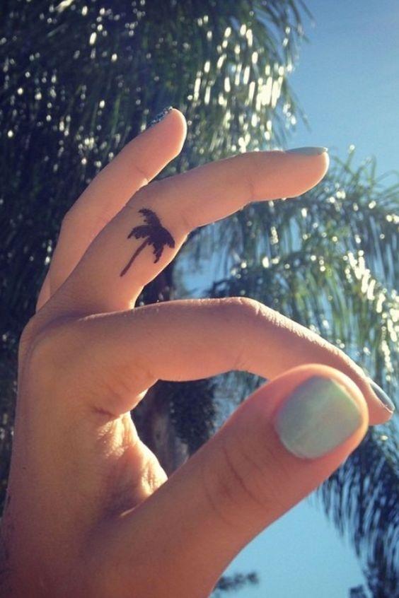 Bản sao mini của những cây dừa lớn.