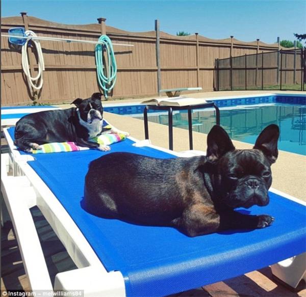 Muốn tiết kiệm thì ra bể bơi sau nhà tắm nắng thôi.(Ảnh: Instagram)