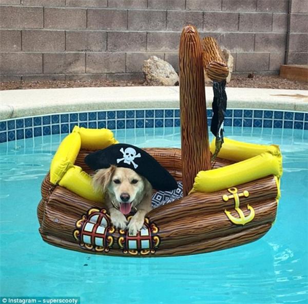 Có ai muốn được vé VIP đến tiệc hồ bơi nhà em không?(Ảnh: Instagram)