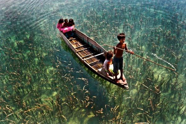 14. Những đứa trẻ như đang chèo thuyền. Bức ảnh được ghi lại ở bang Sabah, Malaysia.