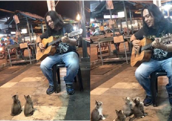 """""""Những anh bạn nhỏ này rất yêu âm nhạc đấy, ngày nào cũng ra nghe chàng nghệ sĩ đường phố này đàn hát hết"""".(Ảnh: BuzzFeed)"""